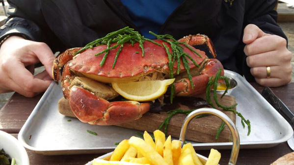 crab samphire