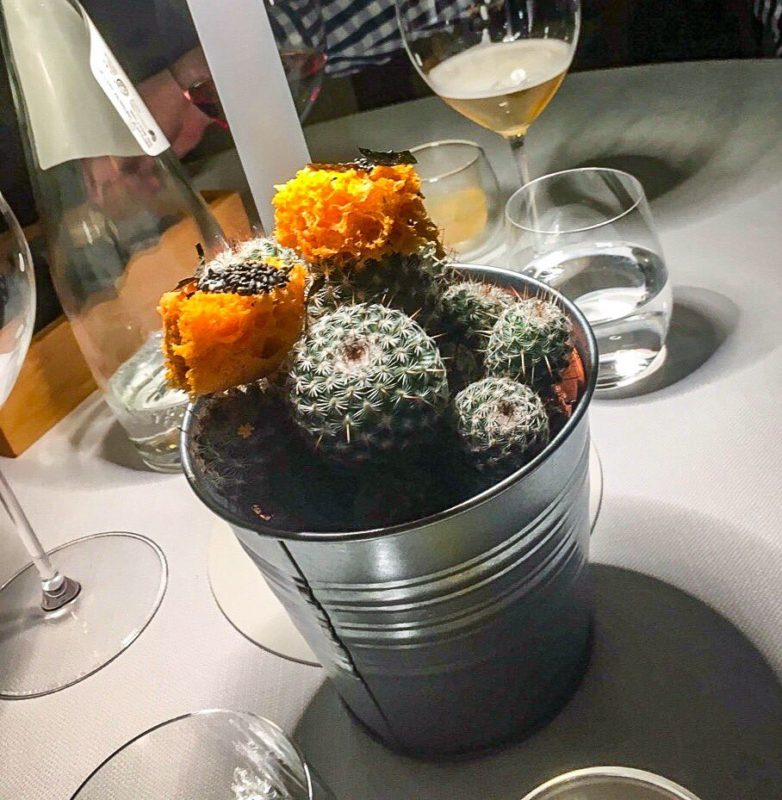 Amuse-bouche on a cactus